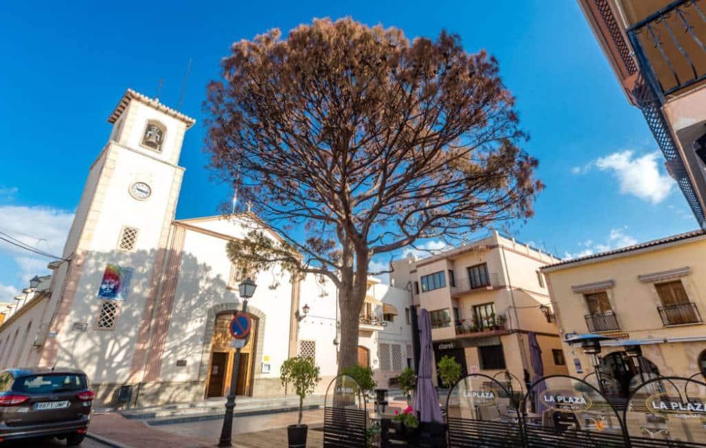 De 'Pi' van het dorp Alfaz del Pi is overleden