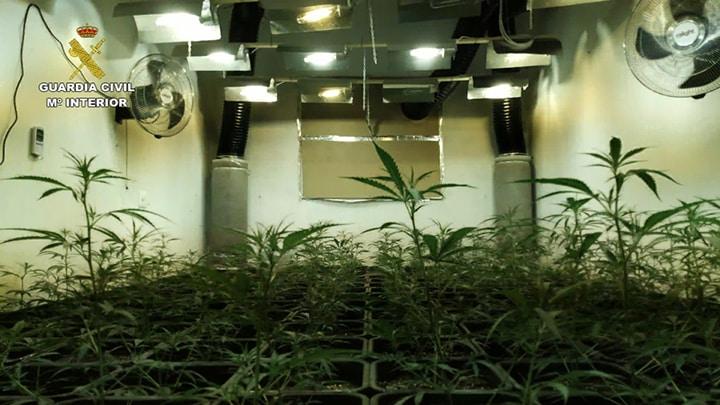 Nederlands stel in Llíber aangehouden vanwege wietplantages