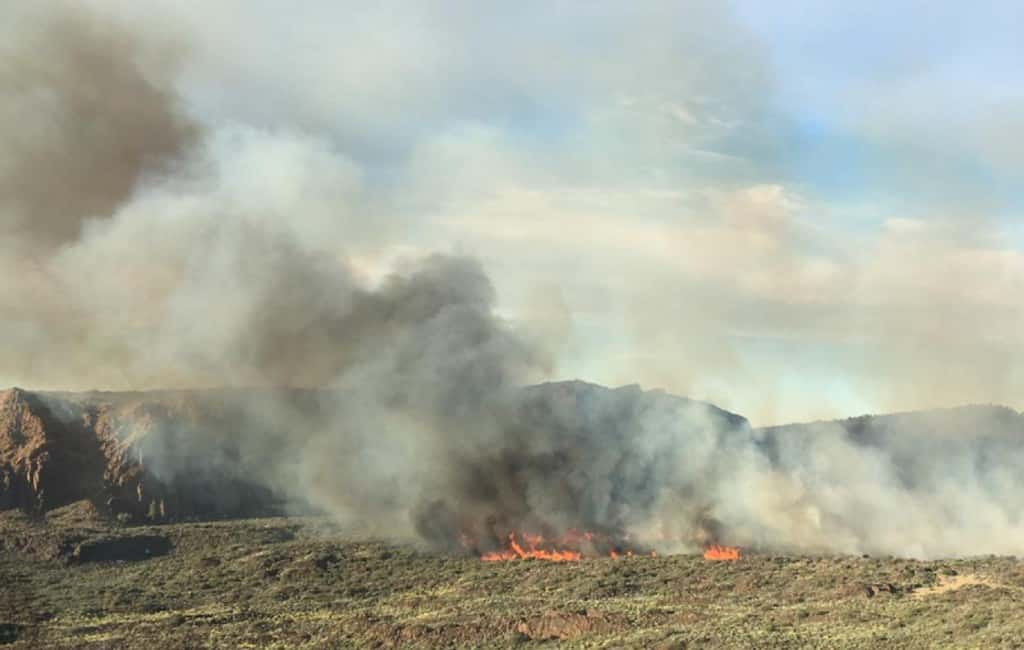 Bosbrand Teide op Tenerife onder controle