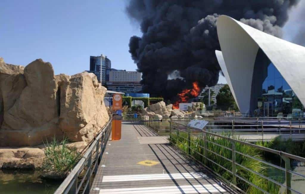 Aquarium Valencia ontruimt na brand nabij