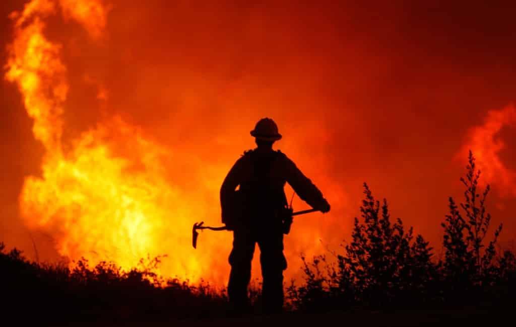 Door brand vernietigde natuur verdrievoudigd dit jaar in Spanje