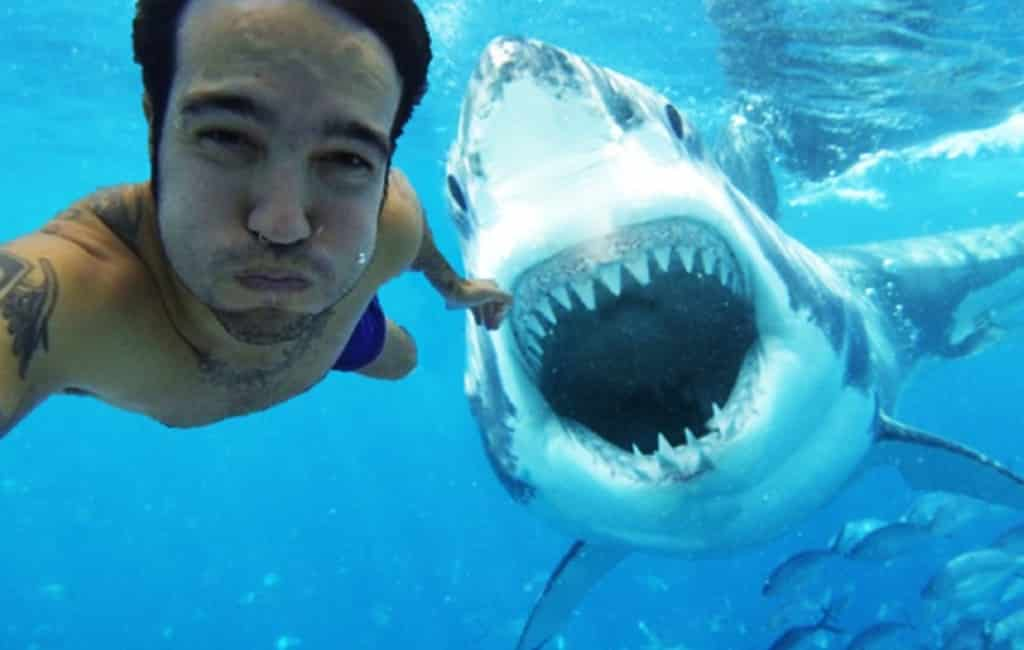 Selfies maken is dodelijker dan haaien