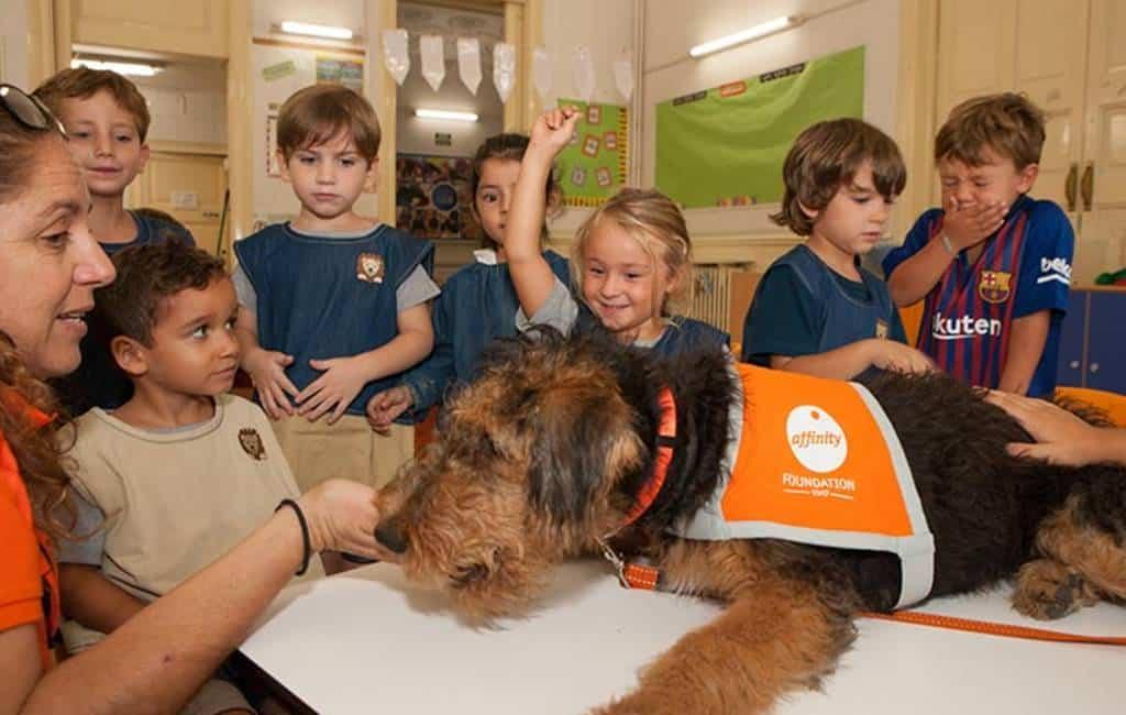 Bescherming en omgang met dieren is lesonderdeel in Granada
