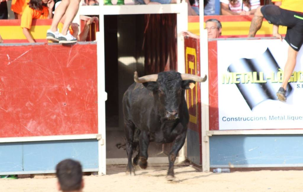 19 gewonden bij Catalaans stierenrennen in Gerona