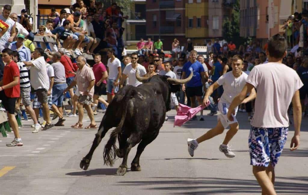 70-jarige man gedood door stier bij dorpsfeest in Valencia