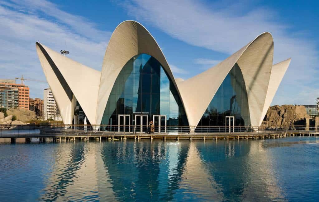 Record bezoeken Oceanogràfic aquarium in Valencia