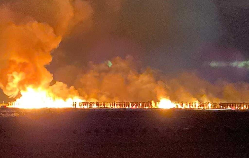 10.000 palmbomen verbrand bij kweker in Camarles