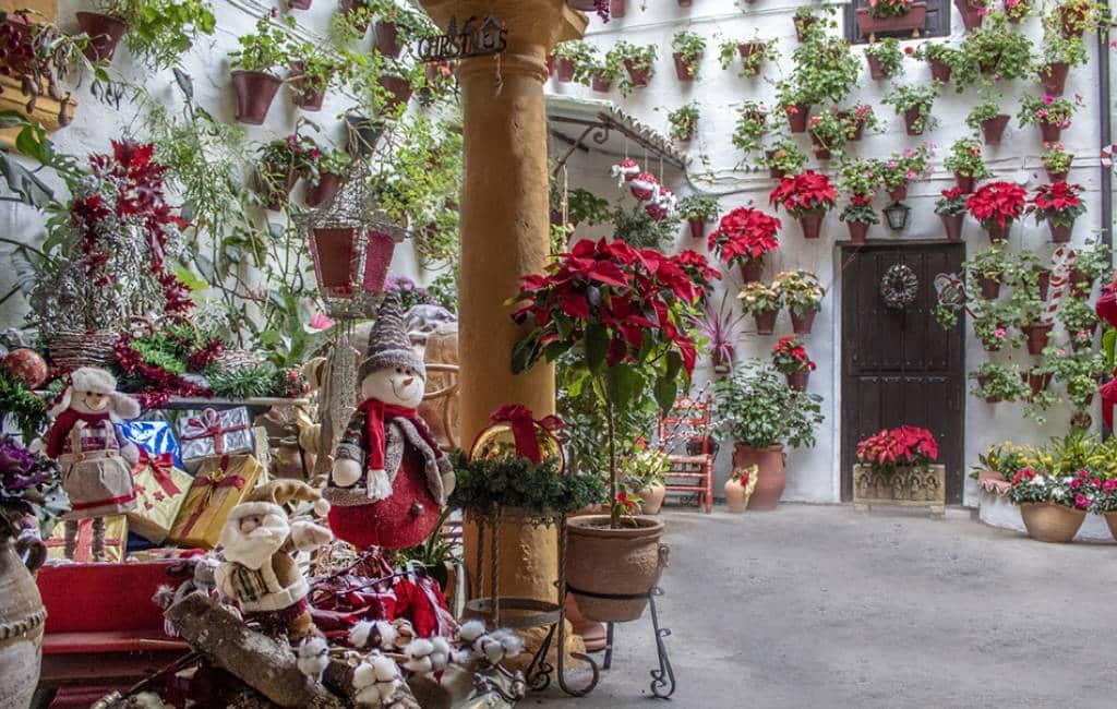 Córdoba viert kerstmis met bloemen