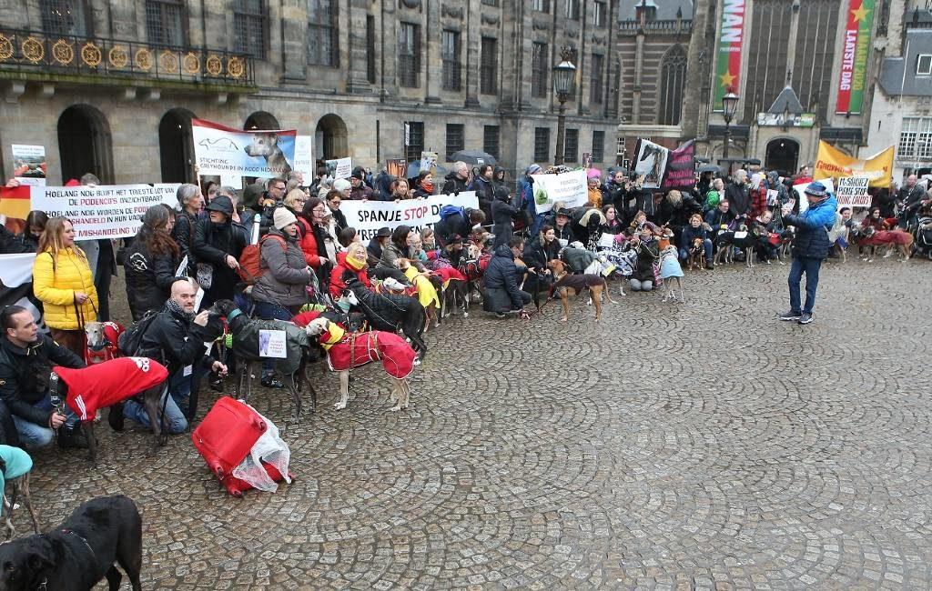 Protest tegen mishandeling jachthonden in Spanje (+Amsterdam)