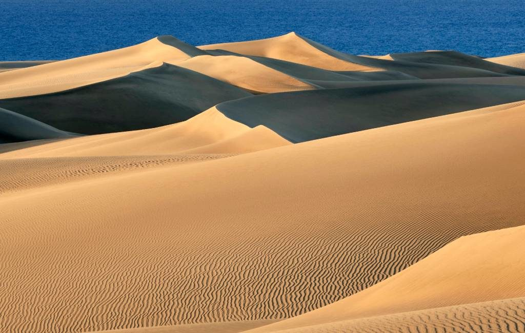 De duinen van Maspalomas op Gran Canaria zien er geweldig uit