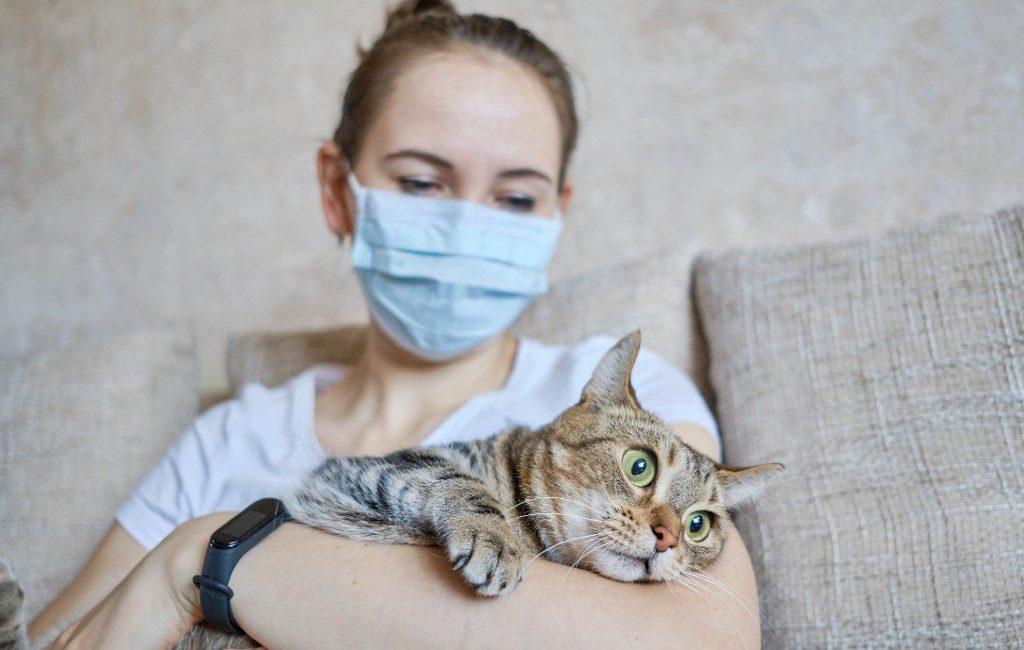 Katten en honden kunnen via mensen besmet raken met het coronavirus