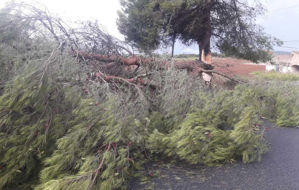 Mini tornado, regen en hagel zorgen voor veel schade op Mallorca