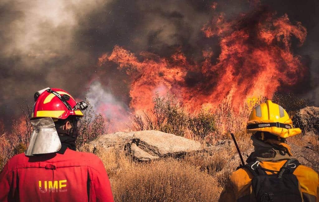 Aantal natuur- en bosbranden dit jaar met 43% vermindert