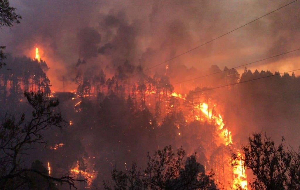 Meer dan 300 evacués bij bosbrand Canarische Eiland La Palma