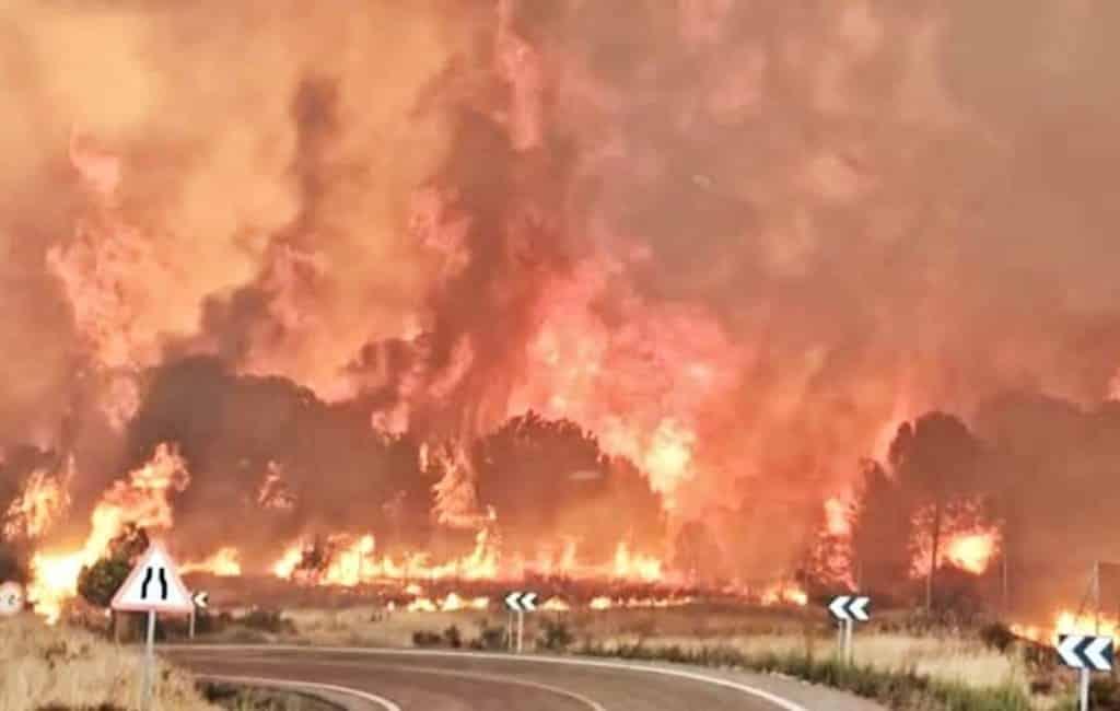 Enorme bosbrand verwoest 4.400 hectare natuur in Huelva