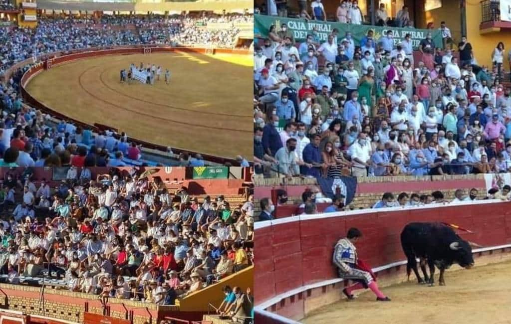 Stierenvechten in Huelva zonder social distance, mondkapjes en met veel publiek