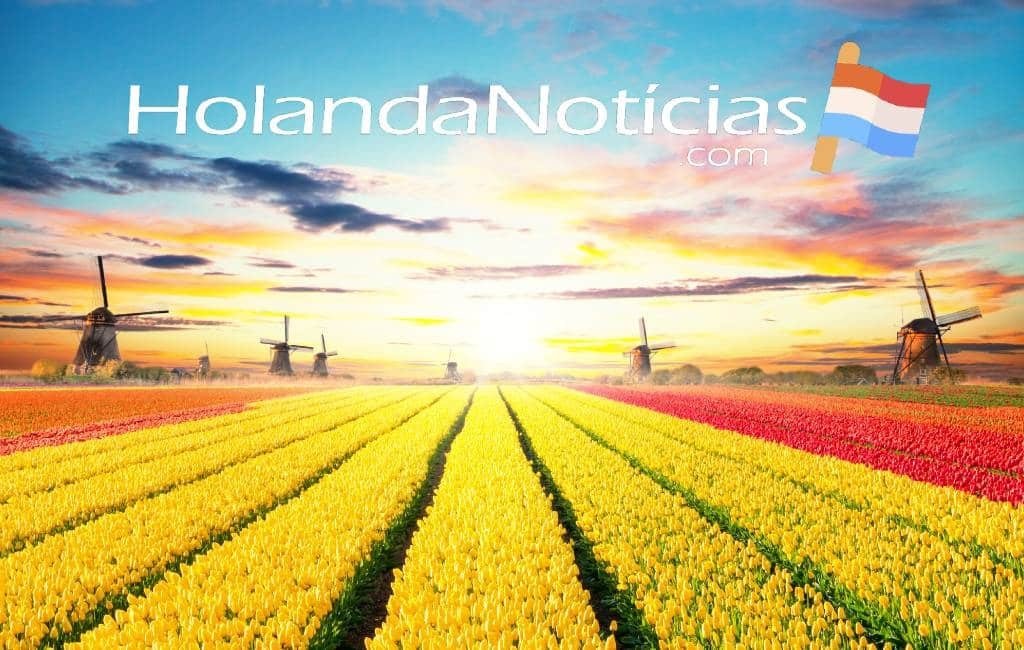 Het actuele nieuws uit Nederland & België in het Spaans