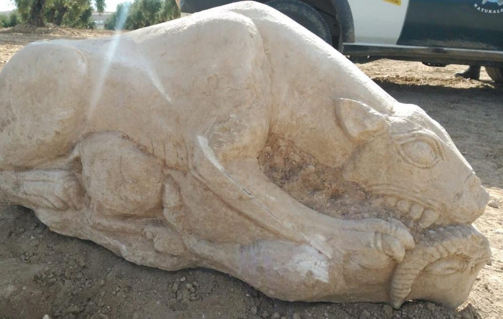 Boer vindt 2500 jaar oude Iberische leeuwin in olijfgaard in Córdoba