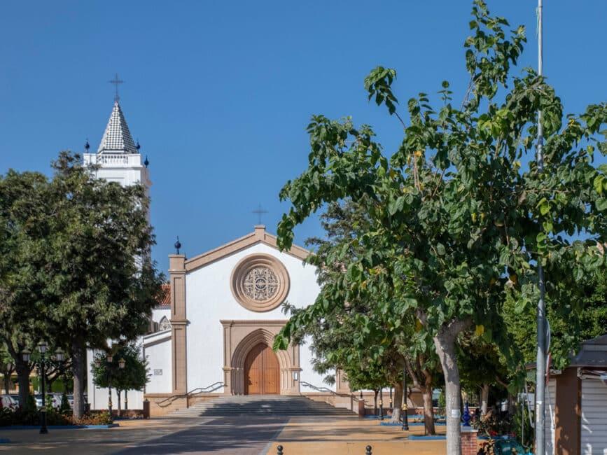 Duizendjarige steeneik in Lecina-Bárcabo (Huesca) boom van het jaar in Spanje