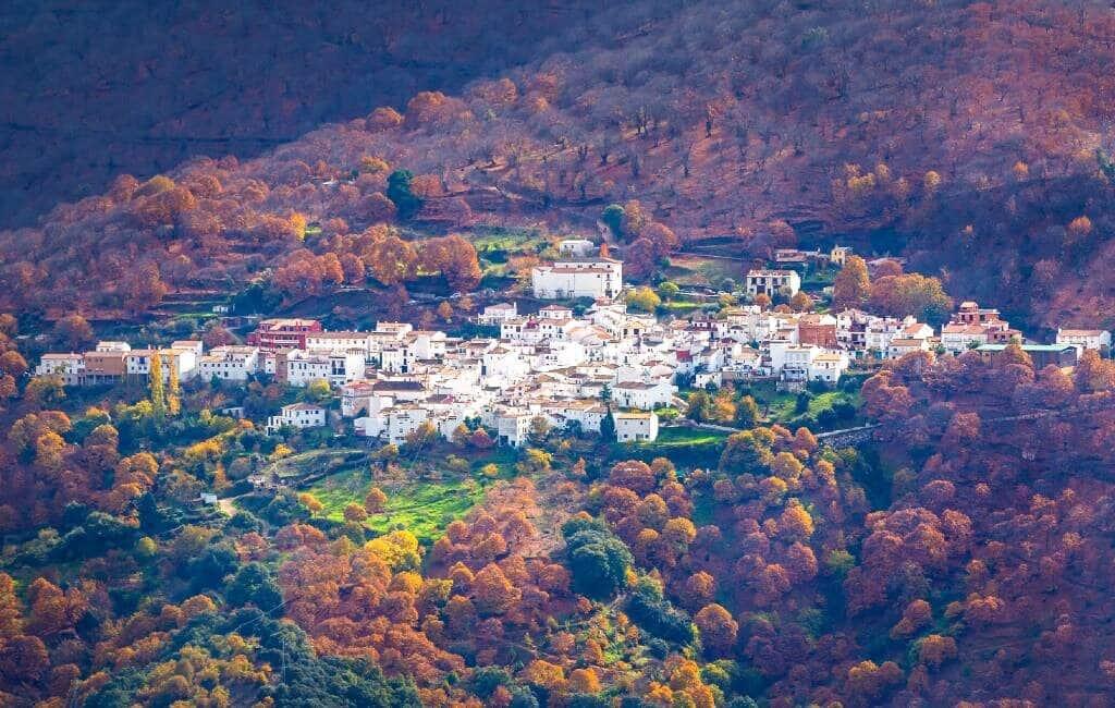 Spaans culinair kerstpakket in plaats van kerstverlichting in dorp nabij Ronda