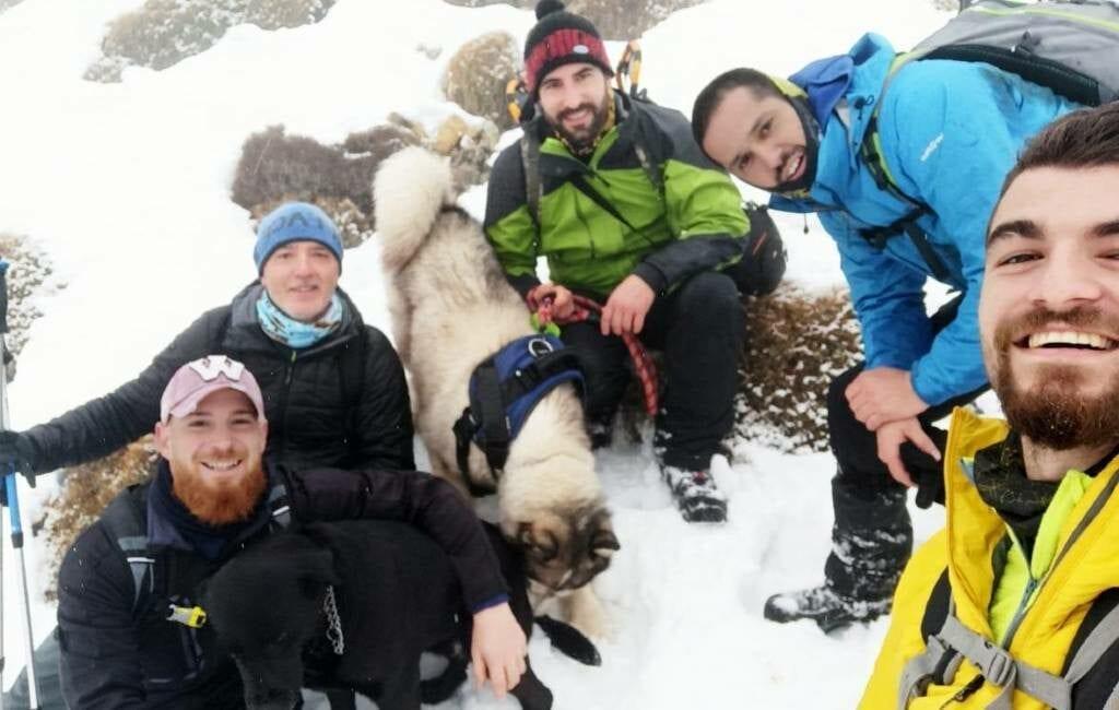 Sinds de Kerst vermiste hond middenin sneeuwstorm gered in bergen van Murcia
