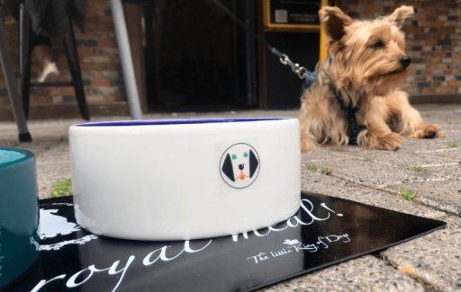 Restaurants in Denia bieden nu ook speciale honden menu's aan op terras