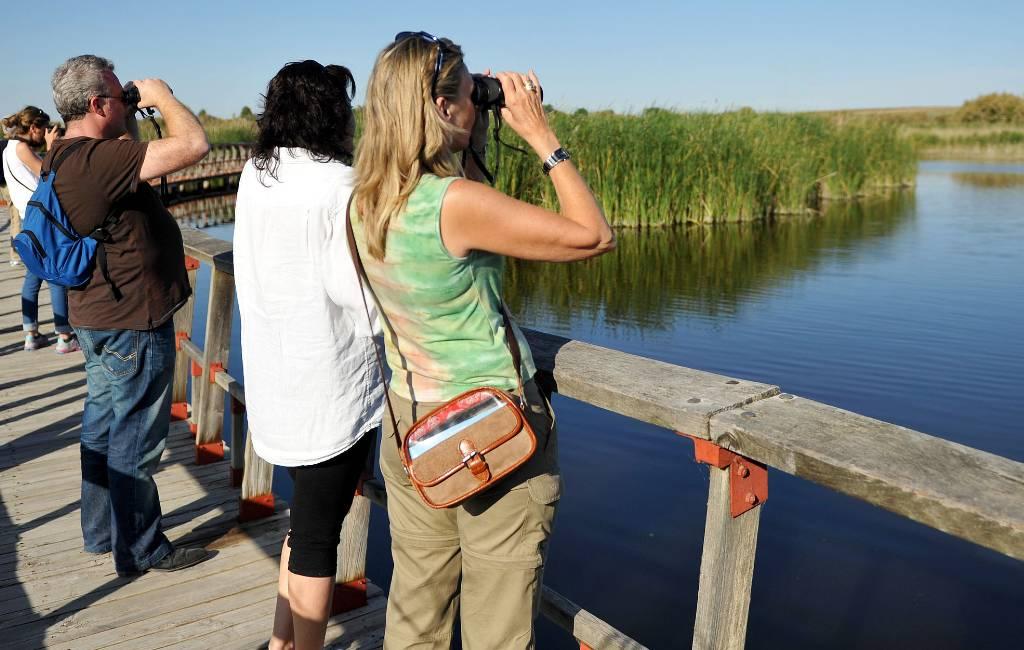 De Internationale Dag van de Vogelmigratie en vogeltelling op 8 en 9 mei in Spanje