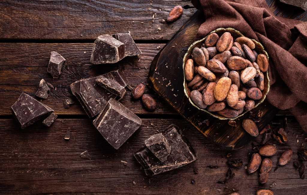 7 juli is dankzij de Spaanse veroveraar Hernán Cortés Wereld Cacao Dag