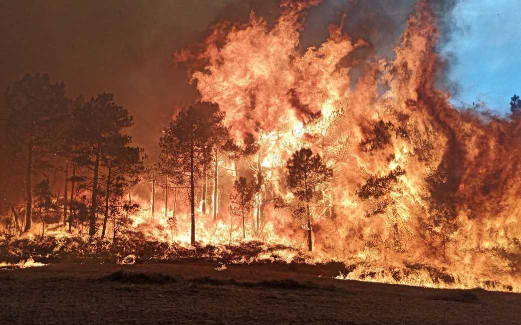 Grote bosbranden in Tarragona en Albacete met duizenden ha verwoeste natuur