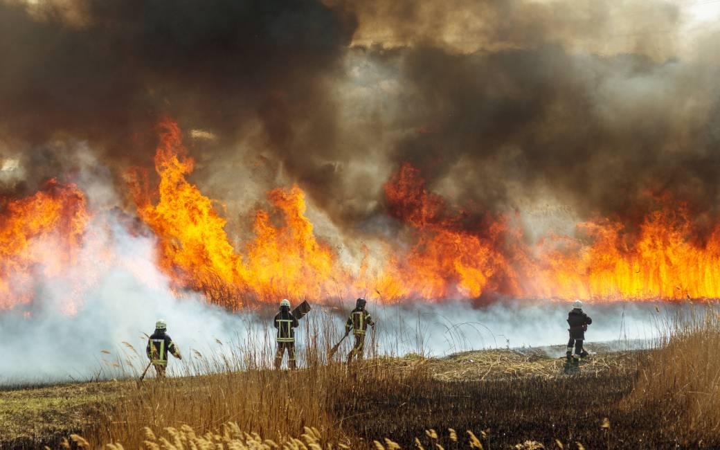 Laatste natuur- en bosbrand in Ávila de vierde grootste ooit in Spanje