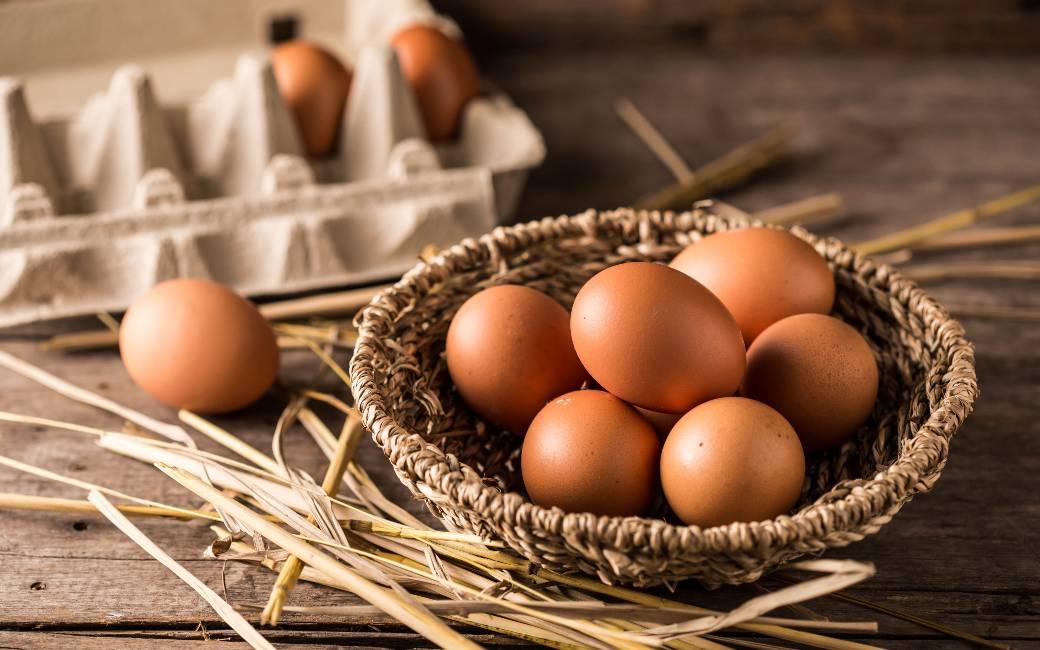 De tweede en derde grootste eierproducenten van Spanje fuseren