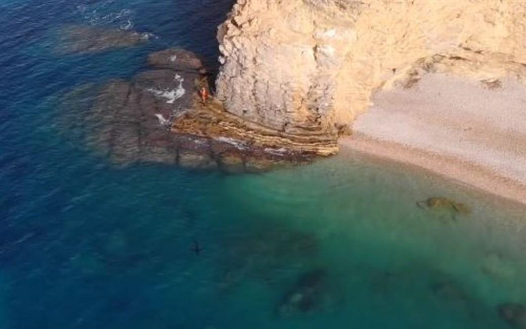 2,5 meter lange Benidorm-haai laat zich zien voor de kust van La Vila Joiosa