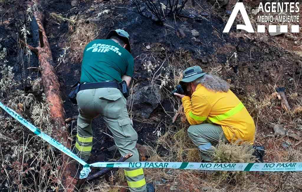 Is een burenruzie de oorsprong van de natuur- en bosbrand aan de Costa del Sol?