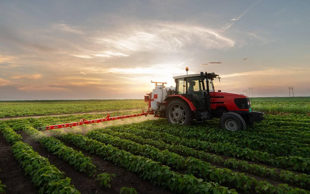 Productie belangrijkste gewassen groeit meer dan landbouwgrond in Spanje