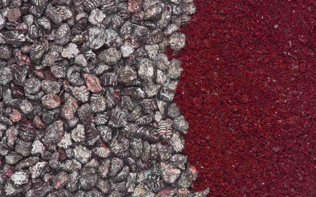 Het insect dat Spanje aan de wereld verkocht en meer waard is dan goud en zilver