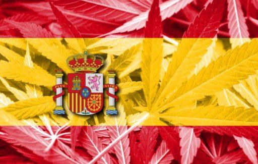 Congres debatteert over legalisatie van cannabis in Spanje