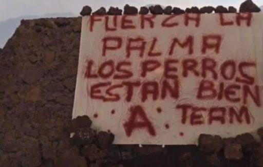 Heeft The A-team heeft de honden op La Palma gered?