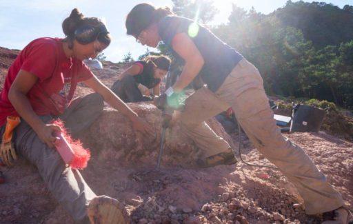 Opnieuw dinosauruseieren bij het Loarre-kasteel in Huesca gevonden