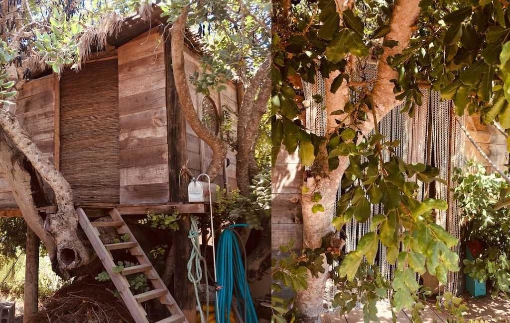 Nieuw bij AirBnB op Ibiza: boomhut voor 99 euro per nacht