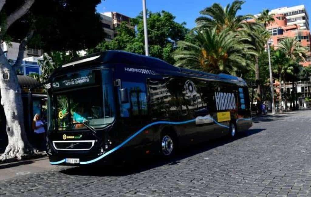 Krijgt de groene guagua concurrentie van zwarte bussen op de Canarische Eilanden?