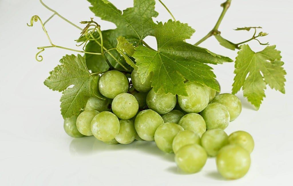 Wat te doen met de overgebleven nieuwjaars druiven in Spanje