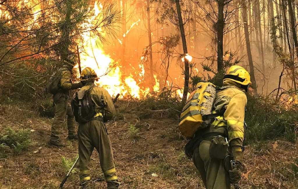 Bosbrand in Almería legt 1.600 ha natuur in de as