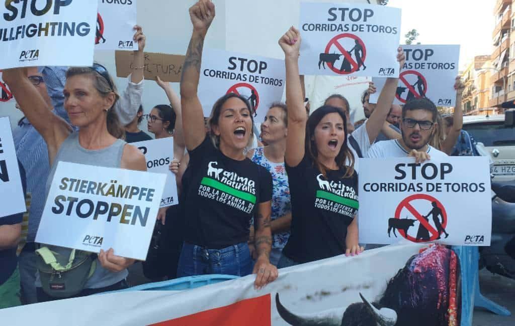 Stierenvechten met protesten en fans teruggekeerd op Mallorca