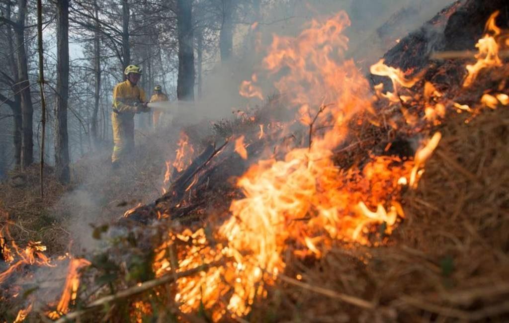 21 actieve natuur- en bosbranden in Cantabrië maar alweer 423 branden dit jaar