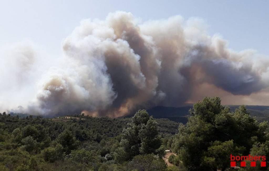 Bosbrand Tarragona legt 4.000 ha natuur in de as met 45 evacuees