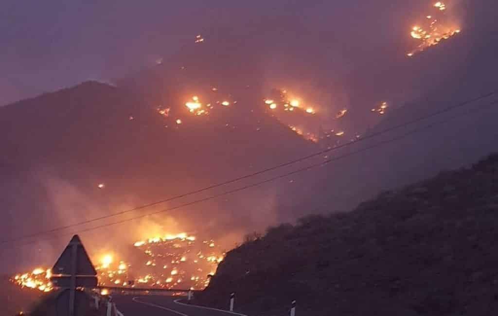 Inwoners geëvacueerd vanwege bosbrand op Gran Canaria