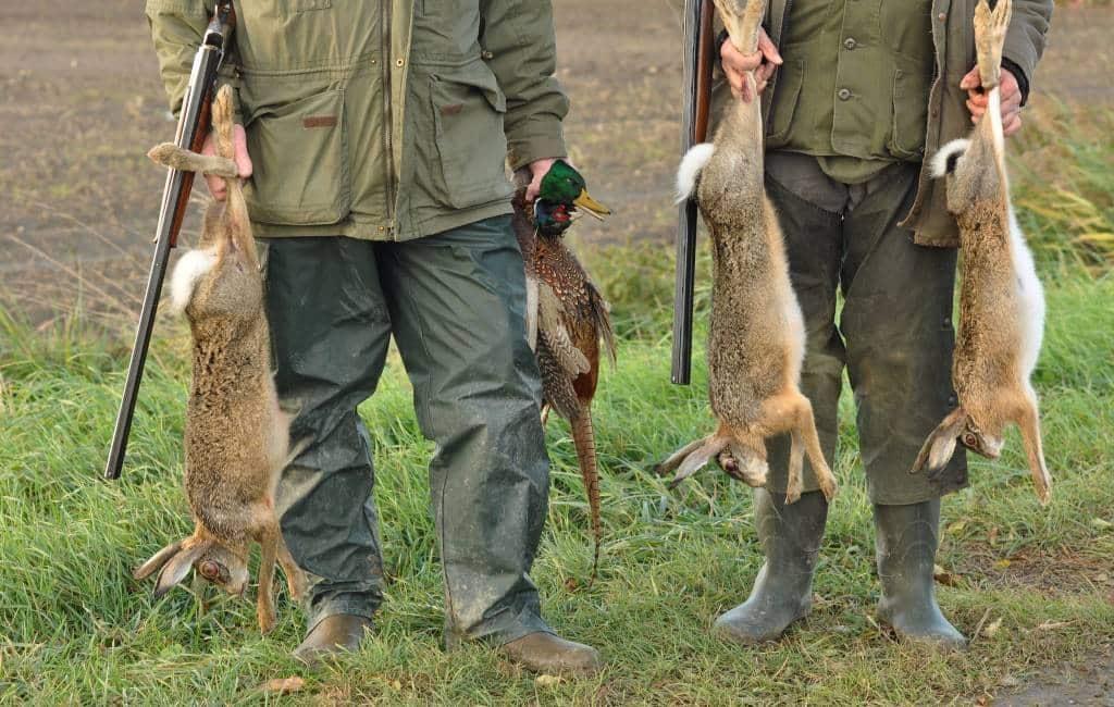Jagers komen massaal naar Aragón vanwege 70 eurocent per dood konijn