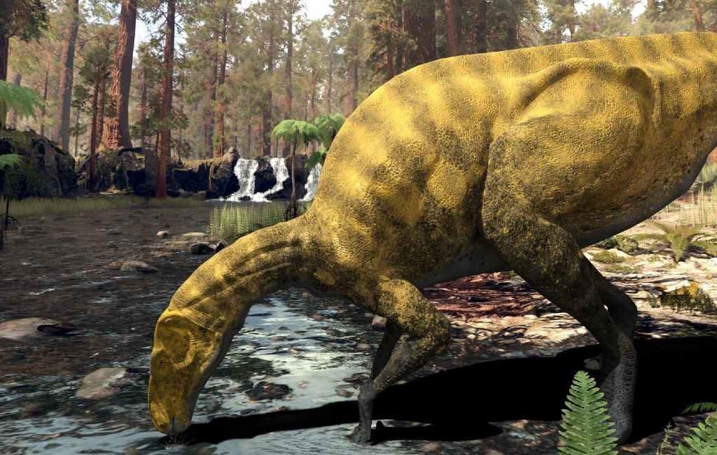Overblijfselen van een onbekende dinosaurussoort ontdekt in Castellón