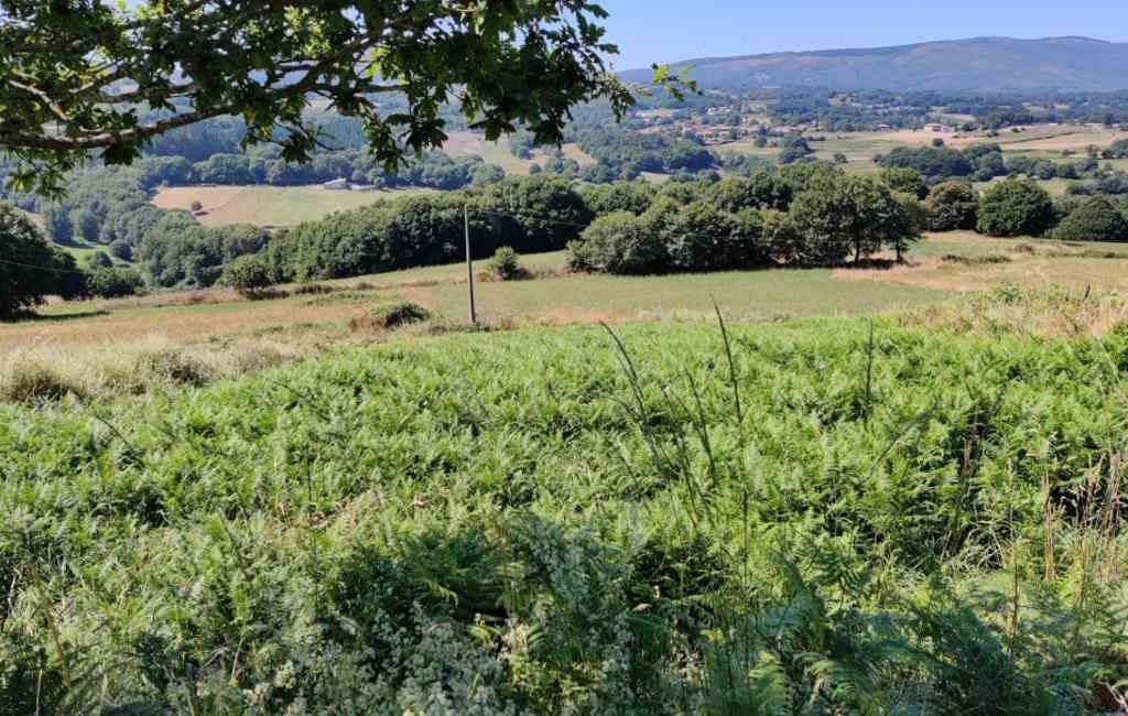 Emigratieverhaal Spanje: Een nieuw avontuur in Galicië (20)