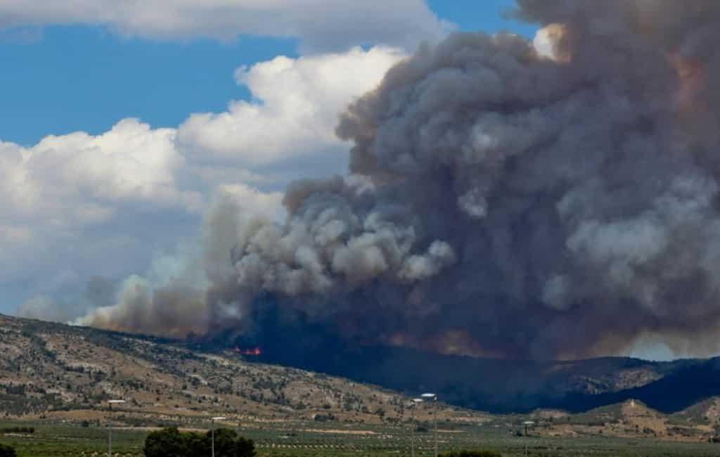 Bosbrand provincie Alicante met 830 ha verwoest en 80 evacuees